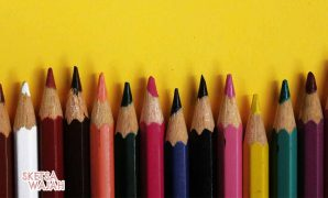Berbagai Jenis Pensil